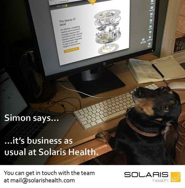 Simon Says 1 Blog Preview Image.jpg